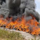 Policía de Indonesia quema 3.3 toneladas de marihuana y pone pedo a toda la ciudad