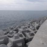 Los cubípodos del Puerto de Málaga