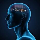 Muchos de los genes que influyen en la personalidad también inciden en nuestra salud mental