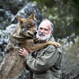 """Carlos Sanz, biólogo: """"Sin Rodríguez de la Fuente, probablemente, hoy no tendríamos lobos en España"""""""