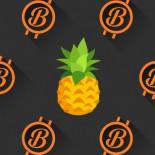 Filántropo dona 86 Millones de dólares en Bitcoin
