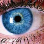 El triunfo del semen estadounidense de piel blanca y ojos azules en Brasil