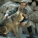Lobos asesinos de Orense: la psicosis que puso contra las cuerdas a Félix Rodríguez de La Fuente